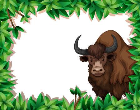 A yak on nature frame illustration Çizim