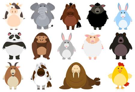 Set of cartoon animal illustration Ilustracja
