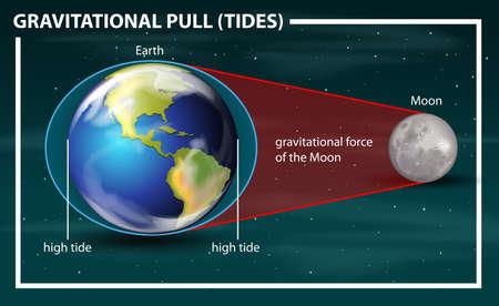 Diagramma delle maree di attrazione gravitazionale
