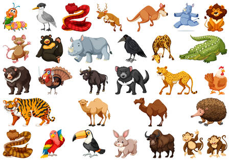 Set of cute animals illustration Illustration