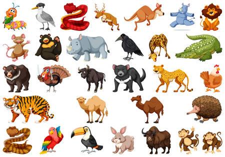 Set of cute animals illustration Illustration