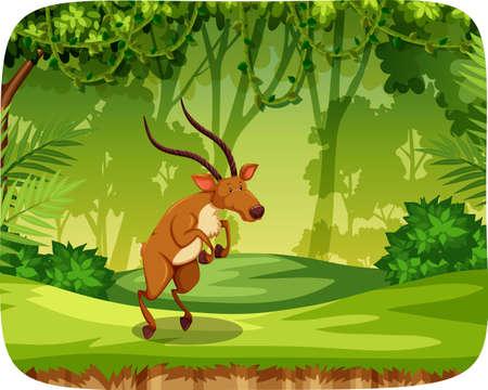 Elk in jungle scene illustration