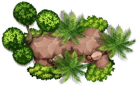 Conjunto de ilustración de roca y planta de naturaleza