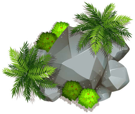 An isolated nature rock  illustration