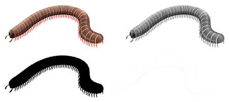 Set of millipede character illustration Illusztráció