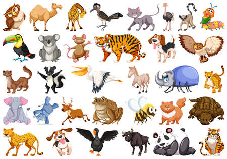 Set of wild animal illustration Stock Illustratie