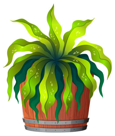 A green plant in pot illustration Иллюстрация