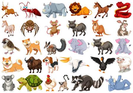 Set of different animal