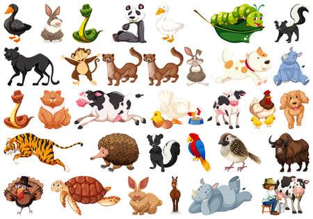 Large set of animals illustration