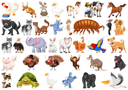 Set of different animals illustration 矢量图像
