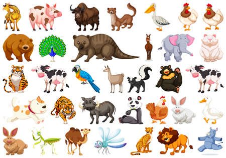 Diverse set of isolated animals on white illustration Ilustração
