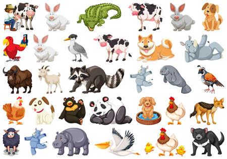 Diverse set of isolated animals on white illustration Illustration