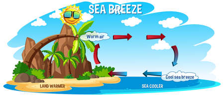 Diagram showing circulation of sea breeze illustration Illustration
