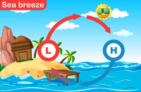 Science poster design for sea breeze illustration