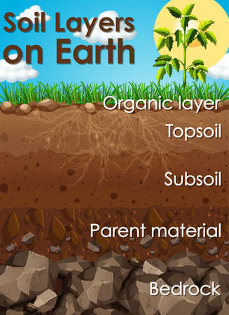 Different soil layers on earth illustration Çizim