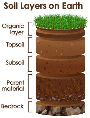 Diagram showing soil layers on earth illustration