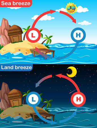 Diagram showing sea and land breeze illustration