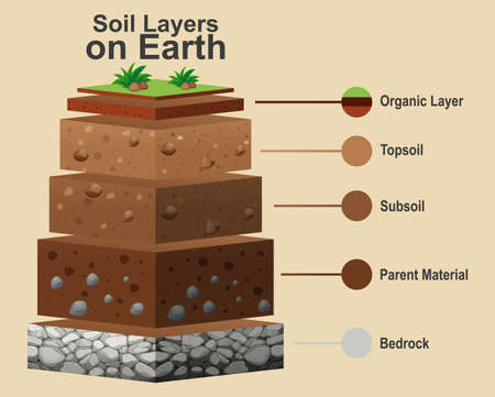 Diagram showing different layers of soil illustration