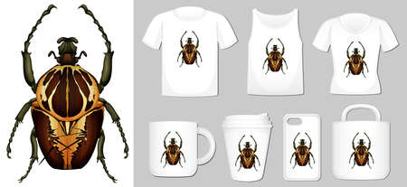 Graphic of beetle on different product templates illustration