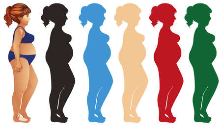 Fat woman and silhouette in different color illustration