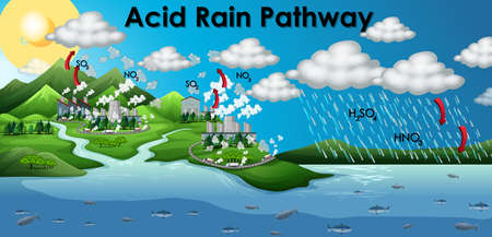 Diagram showing acid rain pathway illustration 向量圖像