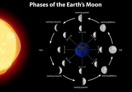 Diagrama que muestra las fases de la ilustración de la luna de la tierra Ilustración de vector