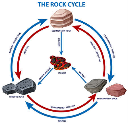 Diagram showing rock cycle illustration 向量圖像