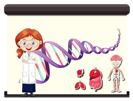 Scientist with diagram showing human DNA illustration 向量圖像