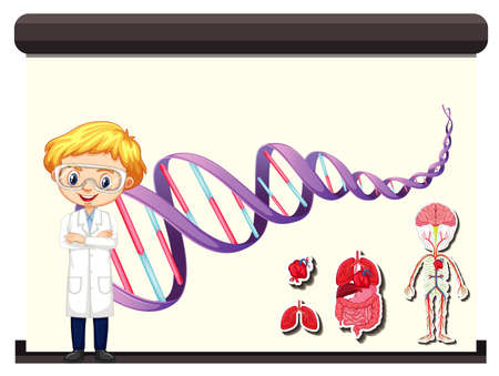 Scientist and human DNA diagram on board illustration