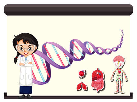 Scientist with diagram of human DNA illustration