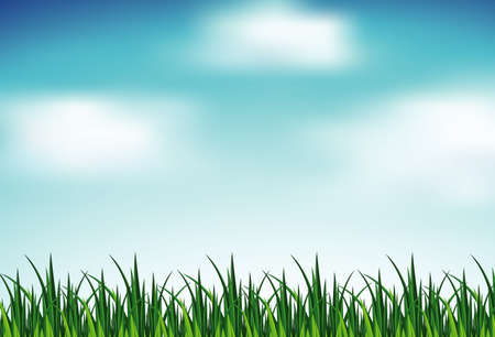 Background scene with green grass and blue sky illustration Vettoriali