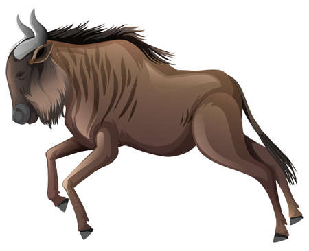 African buffalo running on white background illustration