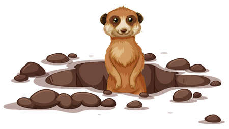 Meerkat coming out on the ground illustration