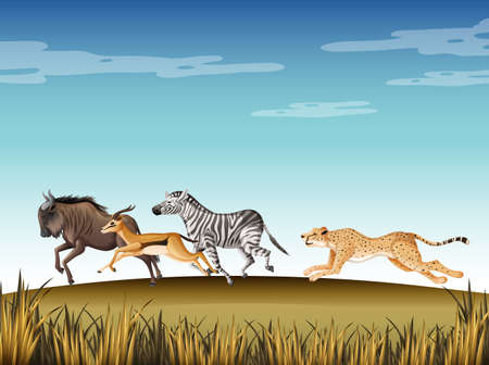 Scene with cheetah chasing after many animals in the field illustration