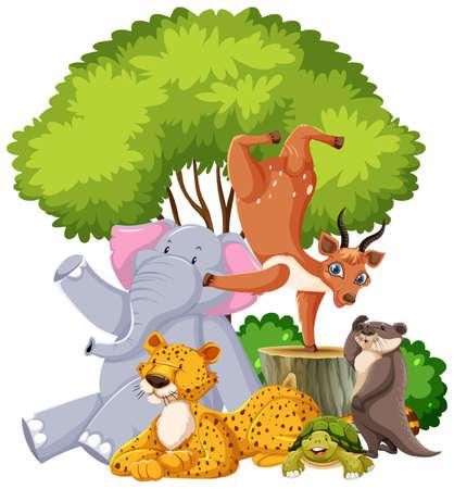 Group of wild animal isolated illustration Stock Illustratie