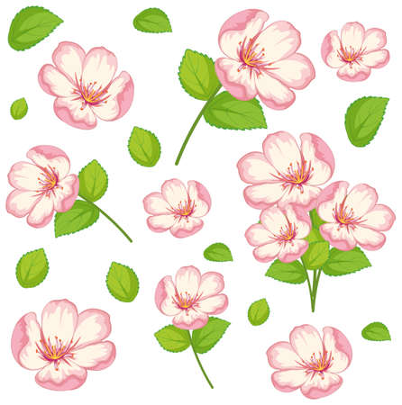 Set of cute pink flowers and leaf illustration