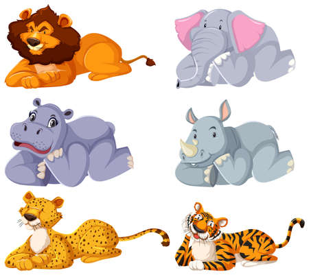 Set of wild animals laying down illustration