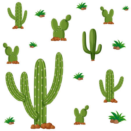Seamless background design with green cactus plants illustration