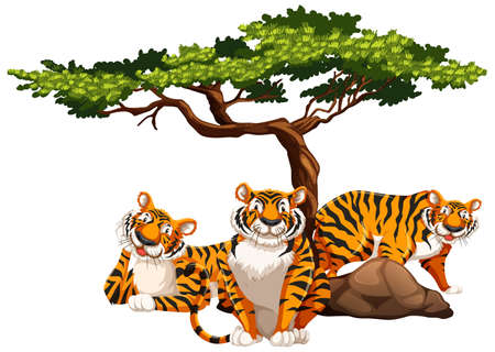 Tigers under the tree isolated illustration