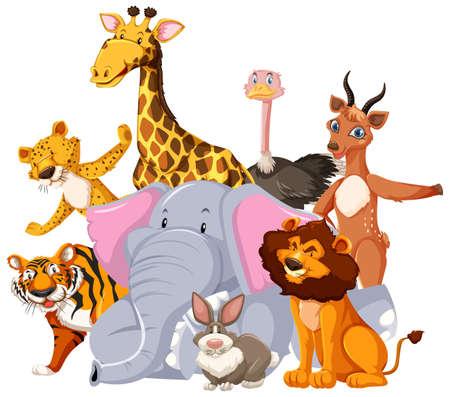 Group of wild animal cartoon character illustration