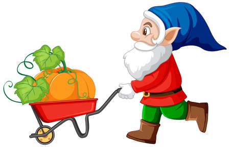 Gnome havest pumpkin with wheelbarrow cart cartoon character on white background illustration