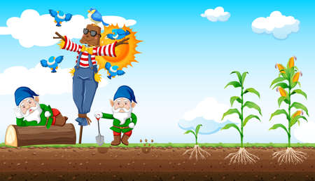 Gnomes and scarecrow cartoon style with corn farm and sky background illustration
