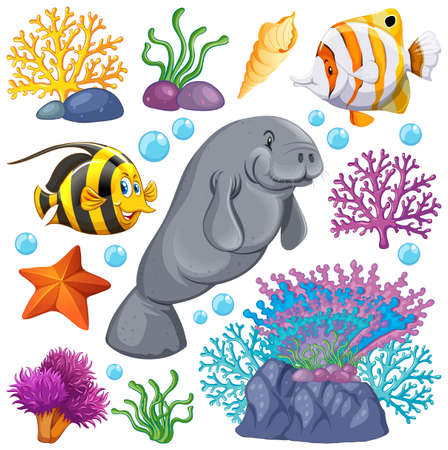 Set of sea creatures and coral on white background illustration