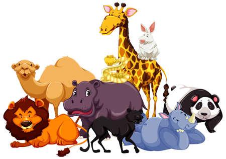 Group of wild animal illustration