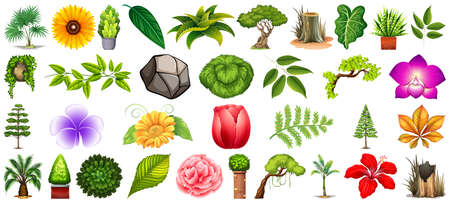 Set of different nature isolated on white background illustration Banque d'images - 150070840