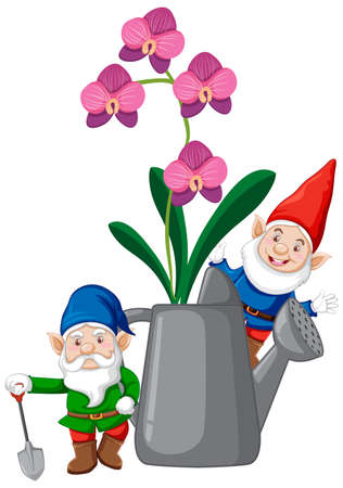 Gnomes with orchids in watering can cartoon style on white background illustration