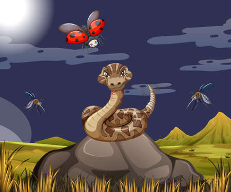 Snake with ladybug in forest scene at night illustration