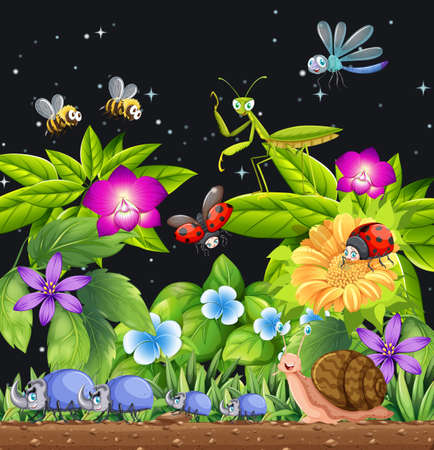Different insects living in the garden scene at night illustration