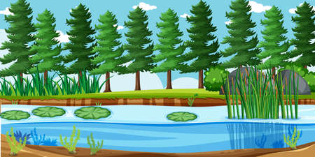 Blank landscape in nature park scene with many pines and swamp illustration