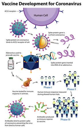 Vaccine development for coronavirus illustration